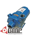 Burks 15GA5-1-1/4 Water Circulation & Cooling System Pump 60 Hz, Single Phase, 3500 RPM, 1 1/2 Horsepower